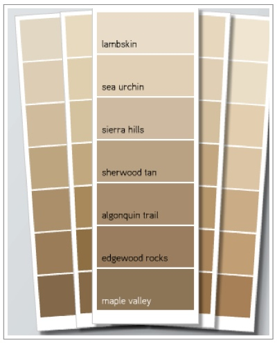 What color should i paint my house decorating by donna Paint colors that go with beige