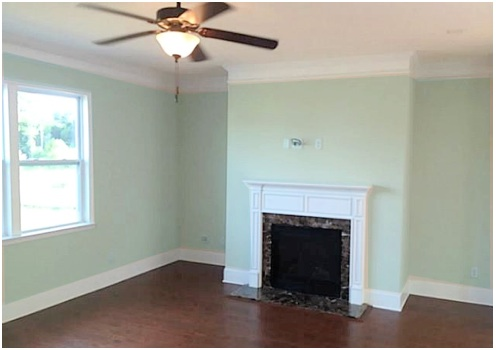 What color should i paint my living room decorating by Light green paint living room