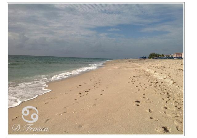 beach_coastal_water_sand_donna_frasca