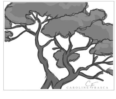 tree_color_consultations_caroline_marie_frasca_