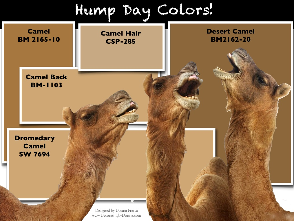 it s hump day is camel an ugly color decorating by. Black Bedroom Furniture Sets. Home Design Ideas