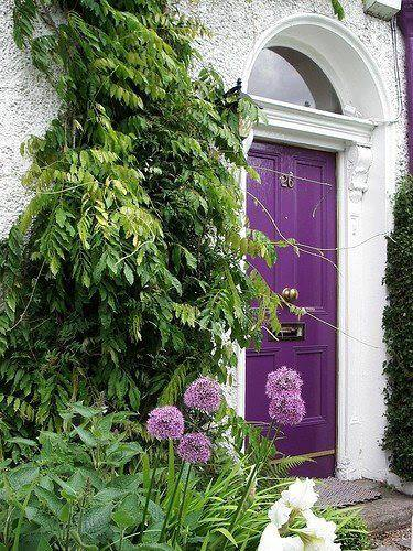 purple_front_door