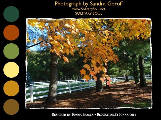 sandra_goroff_solitary_soul_colors_1