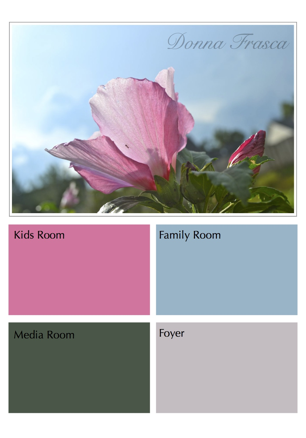 Decorating by Donna • Color Expert | A Virtual Color Expert who is ...