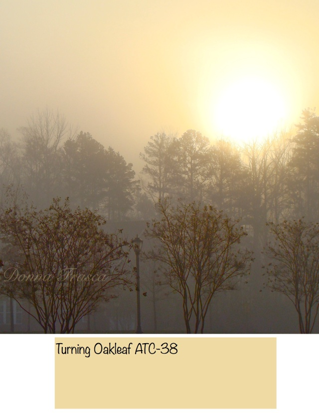 turning_oakleaf_voice_colors_2014