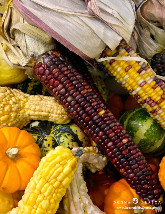 pumpkins_corn_gourds