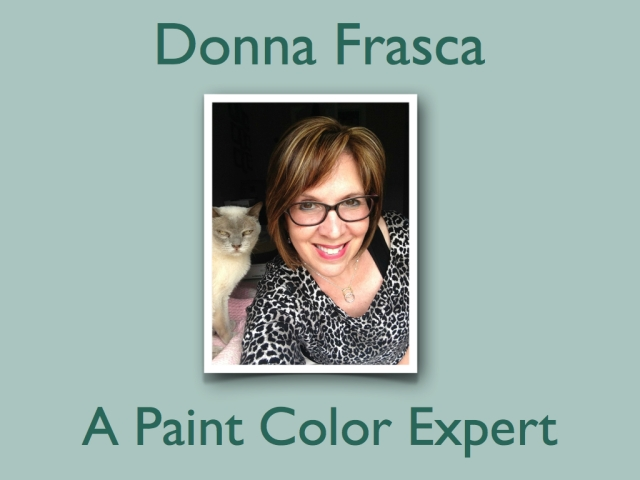A_paint_color_consulant_specialist_expert.001