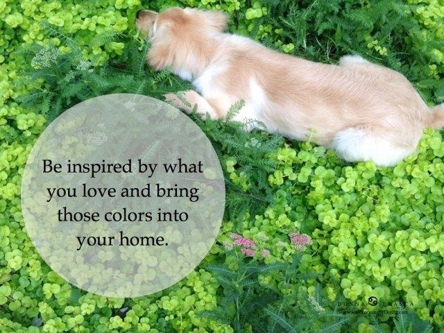 Color-specailist-affordable-paint-color-for-your-home.013