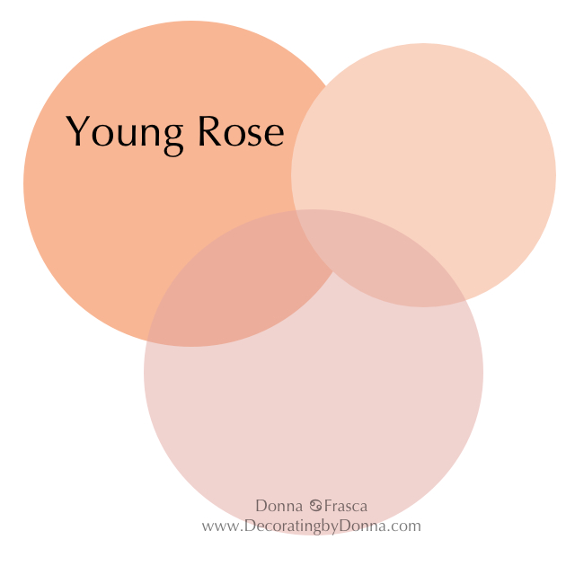 spring-colors-young-rose