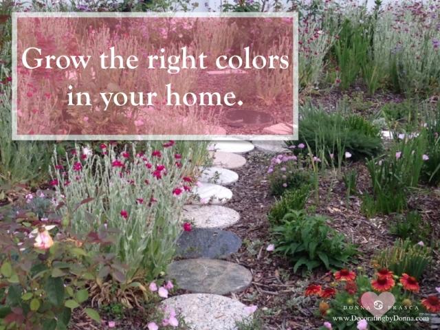 color-cures-color-palettes-virtual-paint-color-expert-donna-frasca.001