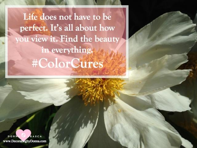 color-cures-color-palettes-virtual-paint-color-expert-donna-frasca.003