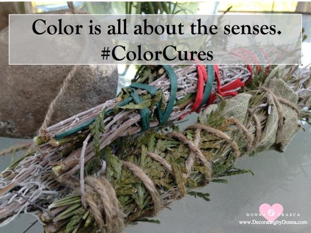 color-cures-color-palettes-virtual-paint-color-expert-donna-frasca.004