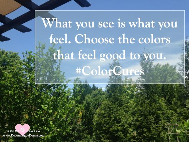 color-cures-color-palettes-virtual-paint-color-expert-donna-frasca.005