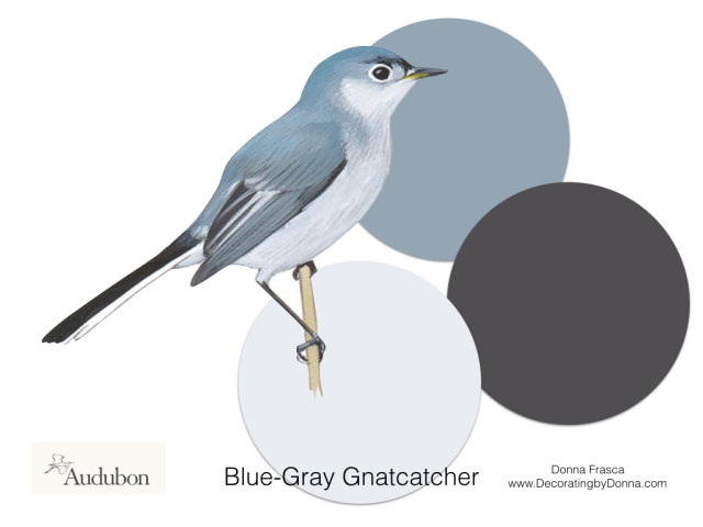 Audubon-birds-color-palettes.003