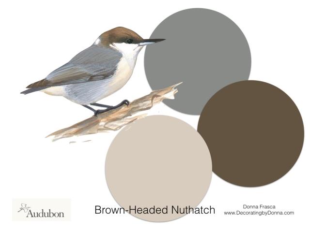 Audubon-birds-color-palettes.004