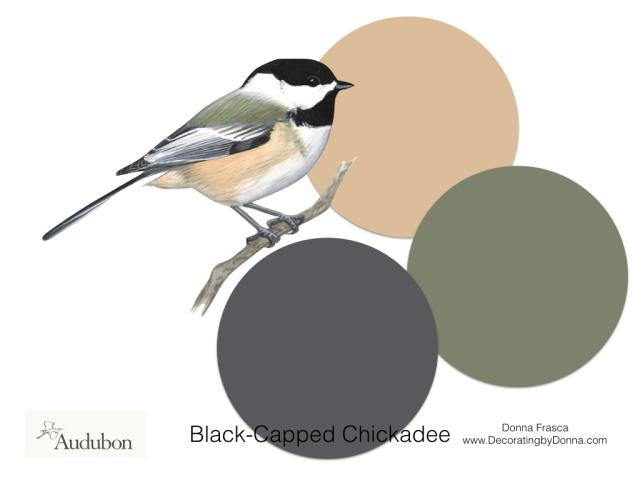 Audubon-birds-color-palettes.007