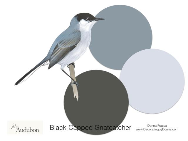 Audubon-birds-color-palettes.008