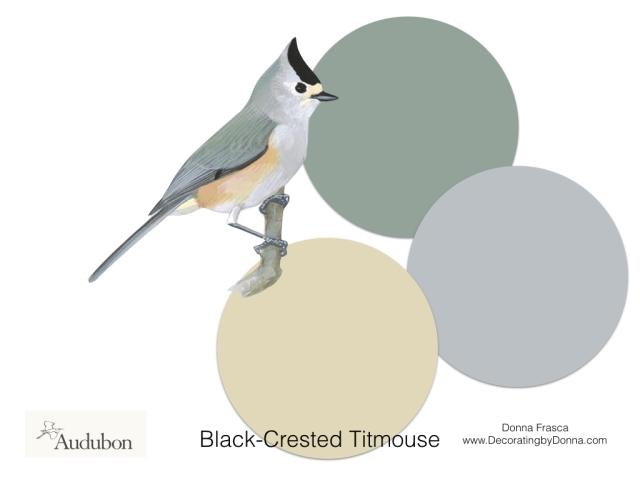 Audubon-birds-color-palettes.009