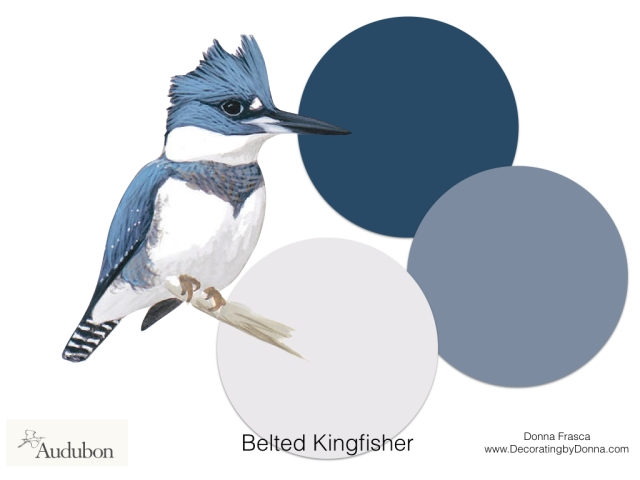 Audubon-birds-color-palettes.011