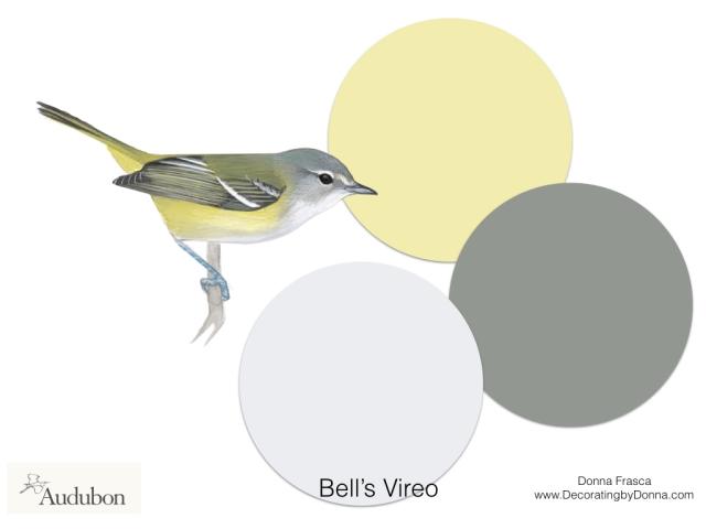 Audubon-birds-color-palettes.012