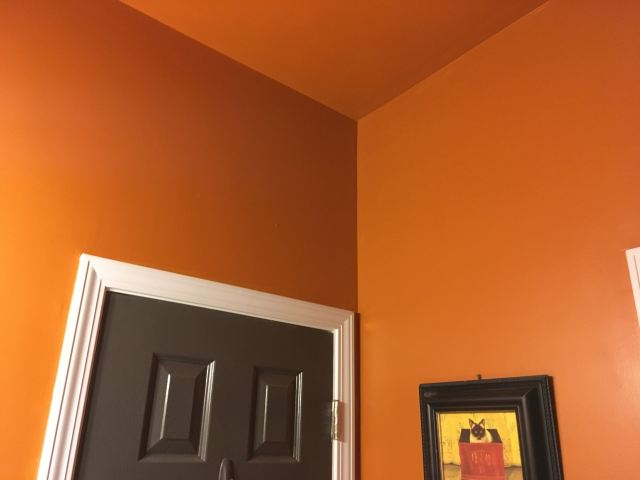ceiling color for the home