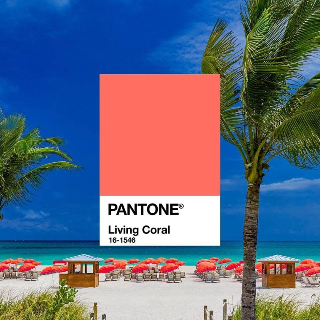 how-to-use-living-coral-in-the-home-pantone-color-of-year-2019-color-expert-donna-frasca